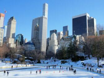 纽约滑冰 - 沃夫曼溜冰场