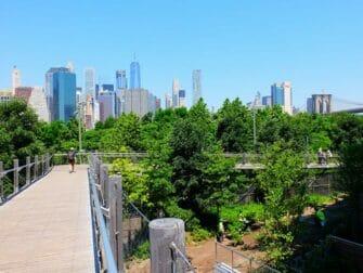布鲁克林大桥 - 施贵宝桥