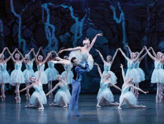 纽约芭蕾舞门票 - 天鹅湖