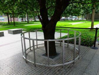 纽约9/11纪念馆 - 幸存者树