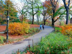 纽约公园精选