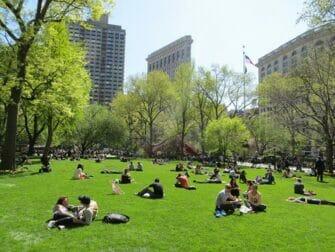 纽约公园精选 - 麦迪逊广场公园的游人