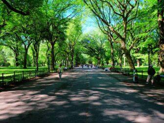 纽约劳动节 - 中央公园散步