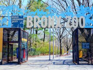 纽约布朗克斯动物园