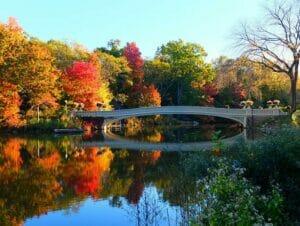 中央公园电影取景地漫步之旅 - 拱桥