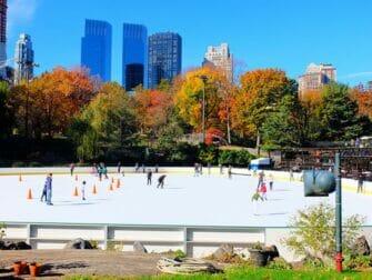 中央公园电影取景地漫步之旅 - 沃尔曼溜冰场