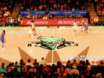 纽约自由人篮球队门票 - 球员