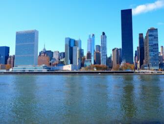 纽约罗斯福岛 - 天际线