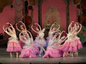 纽约芭蕾舞剧《胡桃夹子》门票 - 花
