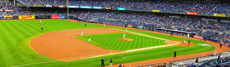 棒球:纽约洋基队