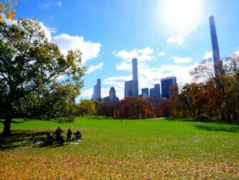 纽约公园精选 - 中央公园