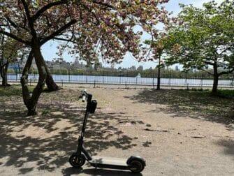 纽约电动滑板车租赁 - 电动滑板车