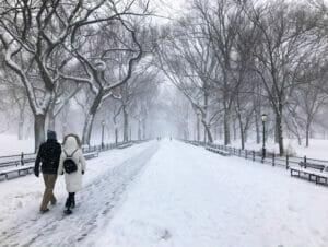 纽约的雪季
