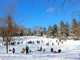 纽约的雪季 - 中央公园
